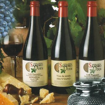 il viandante sandro oddi i vini rossi